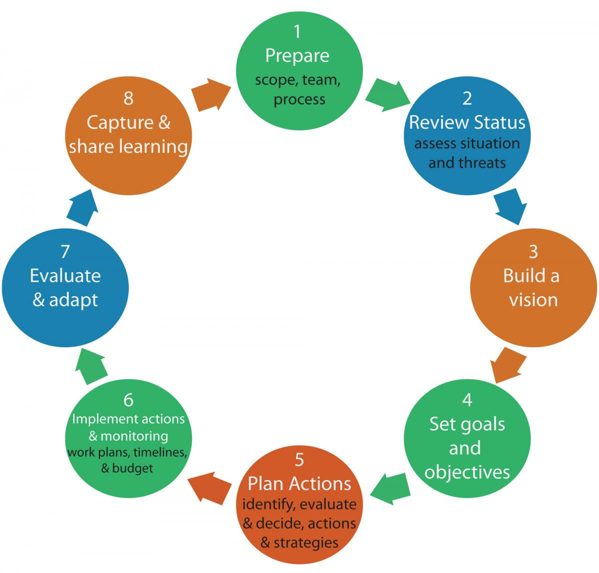 various steps in planning process